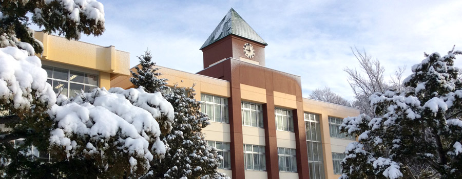 West village Elementary School, snow covering